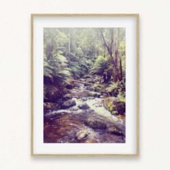 Forest View Wall Art Print