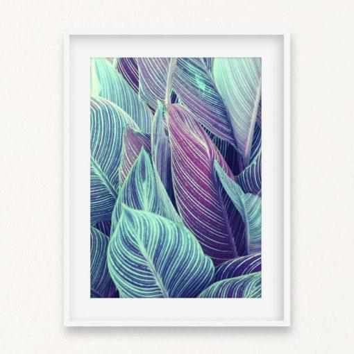 Tropical Leaves Wall Art Print