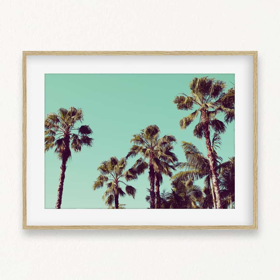 Tropical Palms Wall Art Print