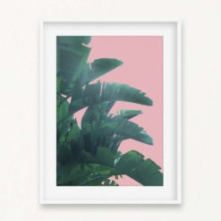 Banana Leaves Wall Art Print