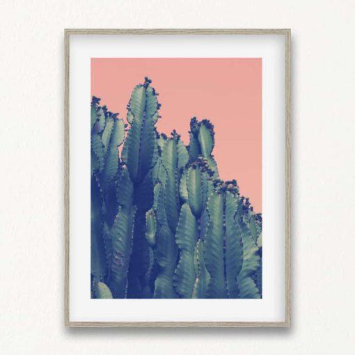 cactus II wall art print