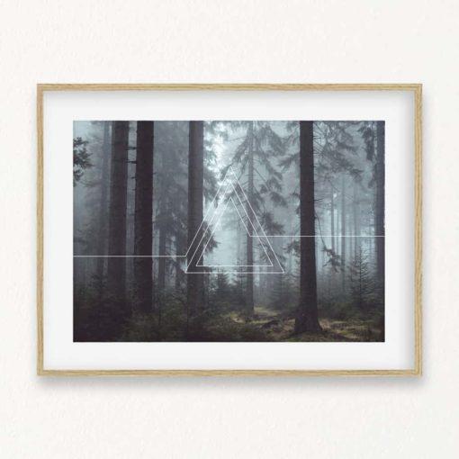 HxD foresttriangles2 lrg
