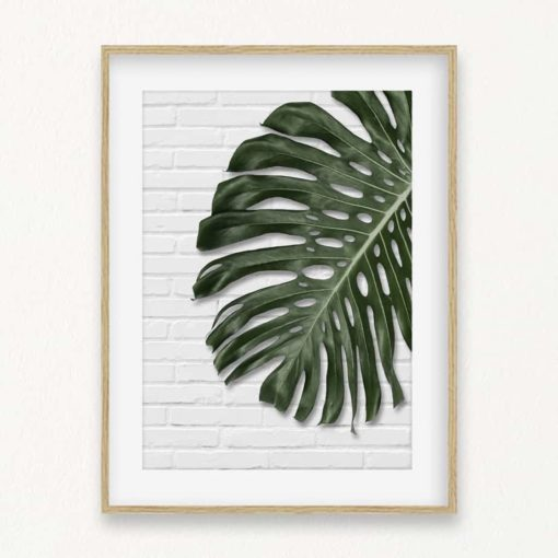Monstera on Brick Wall Art Print
