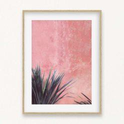 Plant on Pink Wall Wall Art Print