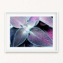 Tropical Leaves II Wall Art Print