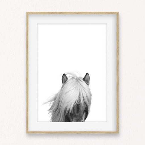 Horse Head II Wall Art Print