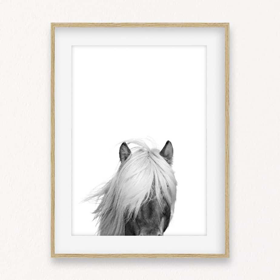 Horse Head II Wall Art Print