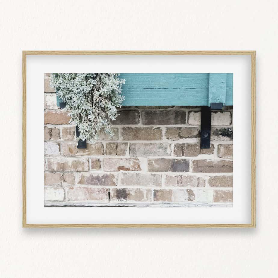 Window Box Wall Art Print