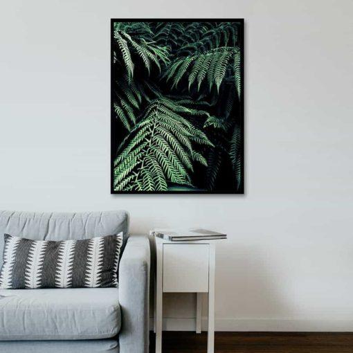 Ferns framed insta