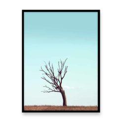 Lone Tree Wall Art Print