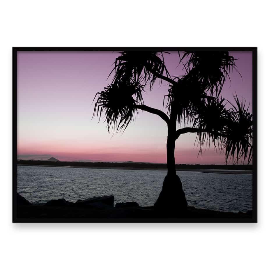 Sunset Palm Wall Art Print
