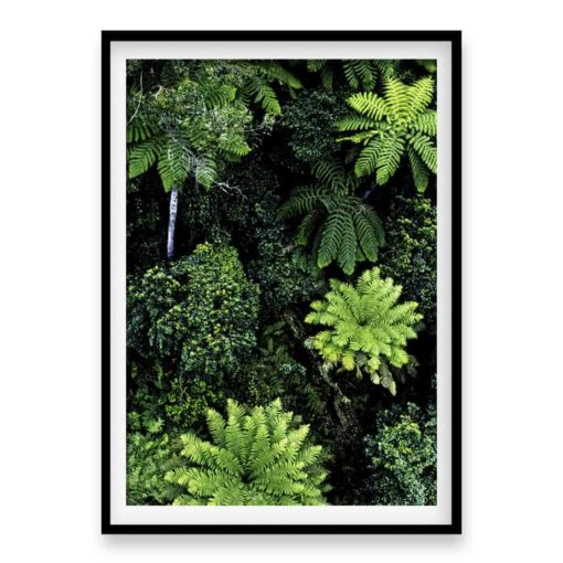 Forest From Above Wall Art Print