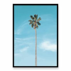 Lone Palm Wall Art Print