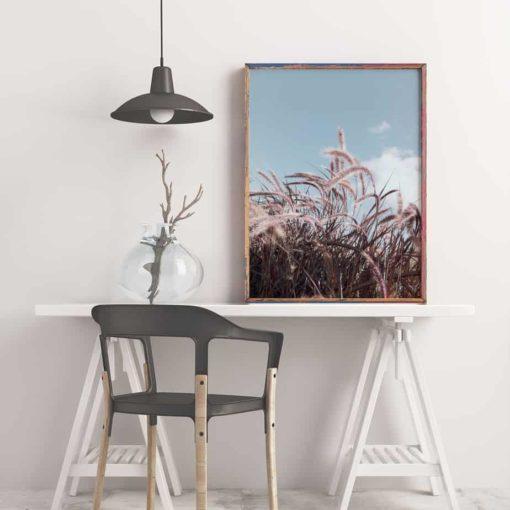 Grassinthewind framed insta