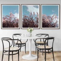 Grassinthewind set3 framed insta