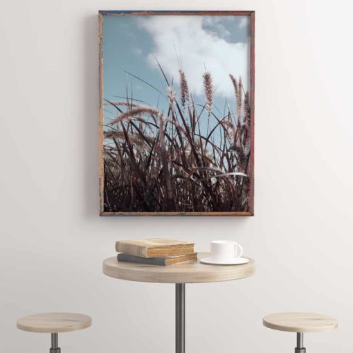 Grassinthewind3 framed insta