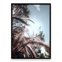 Grass In The Sun Wall Art Print