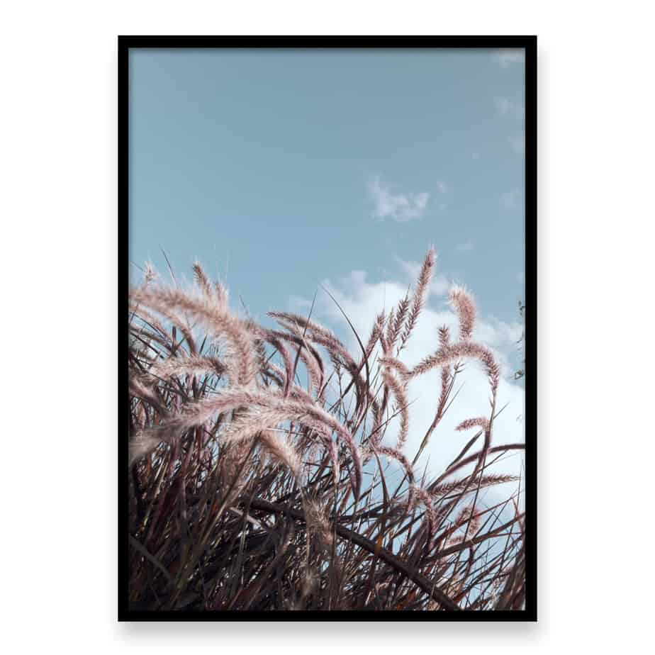 Grass In The Wind II Wall Art Print