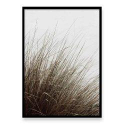 Grass On The Wall Wall Art Print