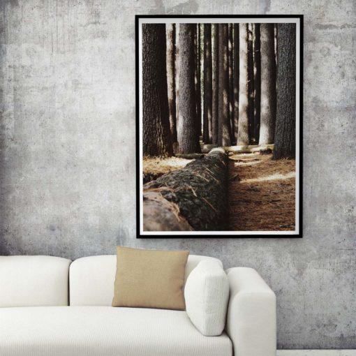 Fallen Tree Wall Art Print