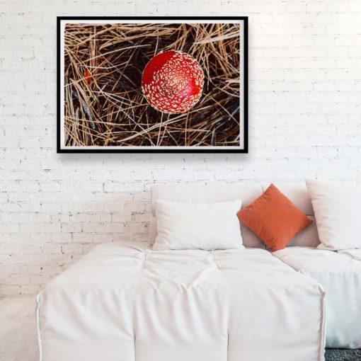 Red Mushroom II (Fly Agaric Mushroom) Wall Art Print