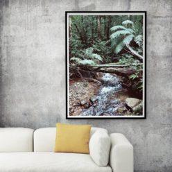ForestStream framed insta
