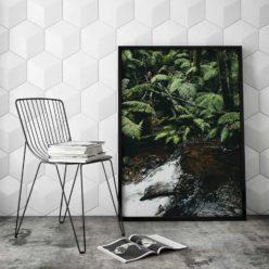 ForestStream2 framed insta