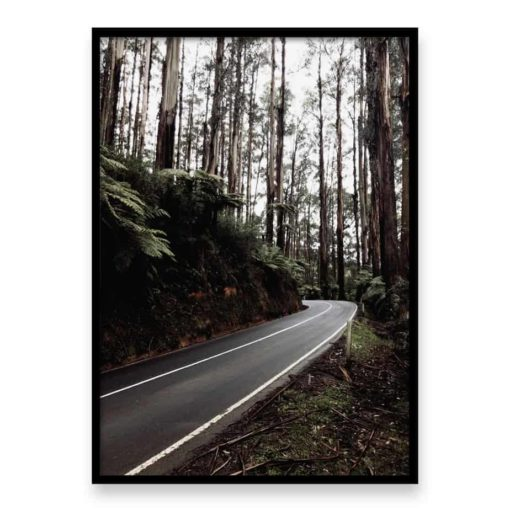 Forest Drive Wall Art Print