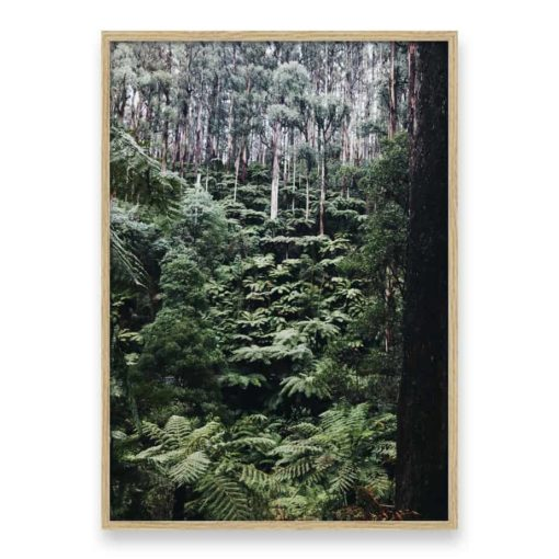 Forest Side Wall Art Print
