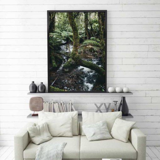 foreststream3 framed insta