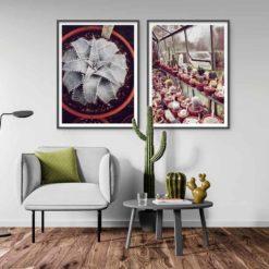 Dyckia-Cactus House 2 Wall Art