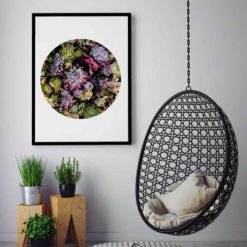 succulent circle wall art