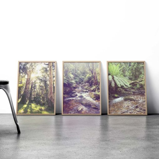 Intothewoods 3 framed insta web