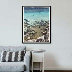 Little Salmon Bay View II - Wall Art Print