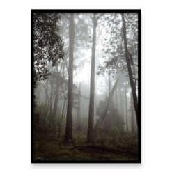 Misty Forest - Wall Art Print