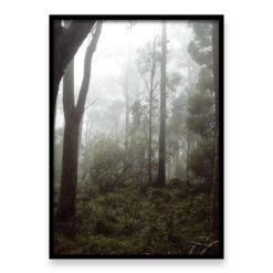 Misty Forest II - Wall Art Print