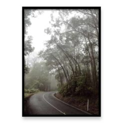 Misty Forest Drive - Wall Art Print