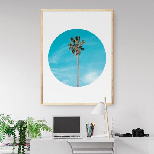 Lone Palm Circle Wall Art Print